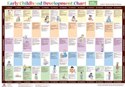 Picture of Early Childhood Development Chart