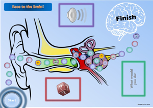 Picture of Race to the Brain Game